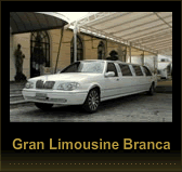 gallery/img-141336-limousine02-10365