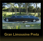 gallery/img-141336-limousine03-10785